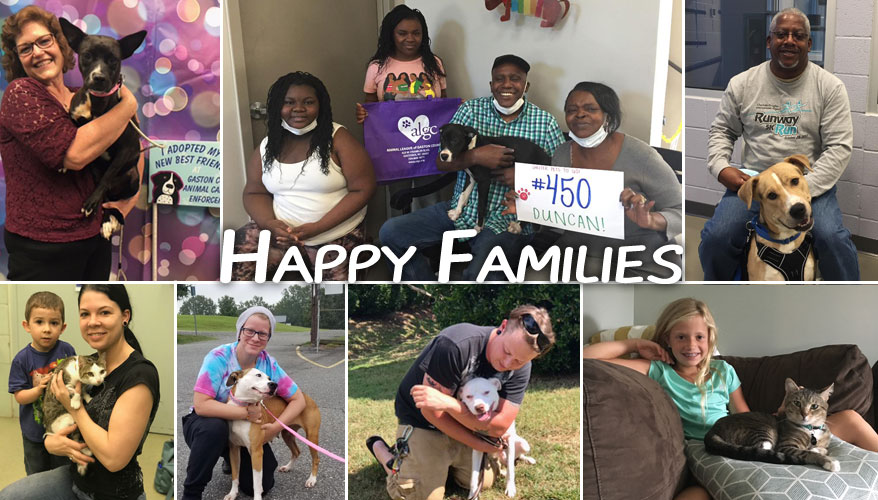 Shelter Pets To Go - Happy Families